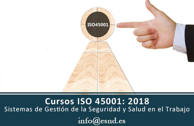 Experto ISO 45001: 2018